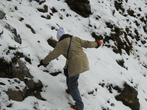 Snow fall at Mayodiya