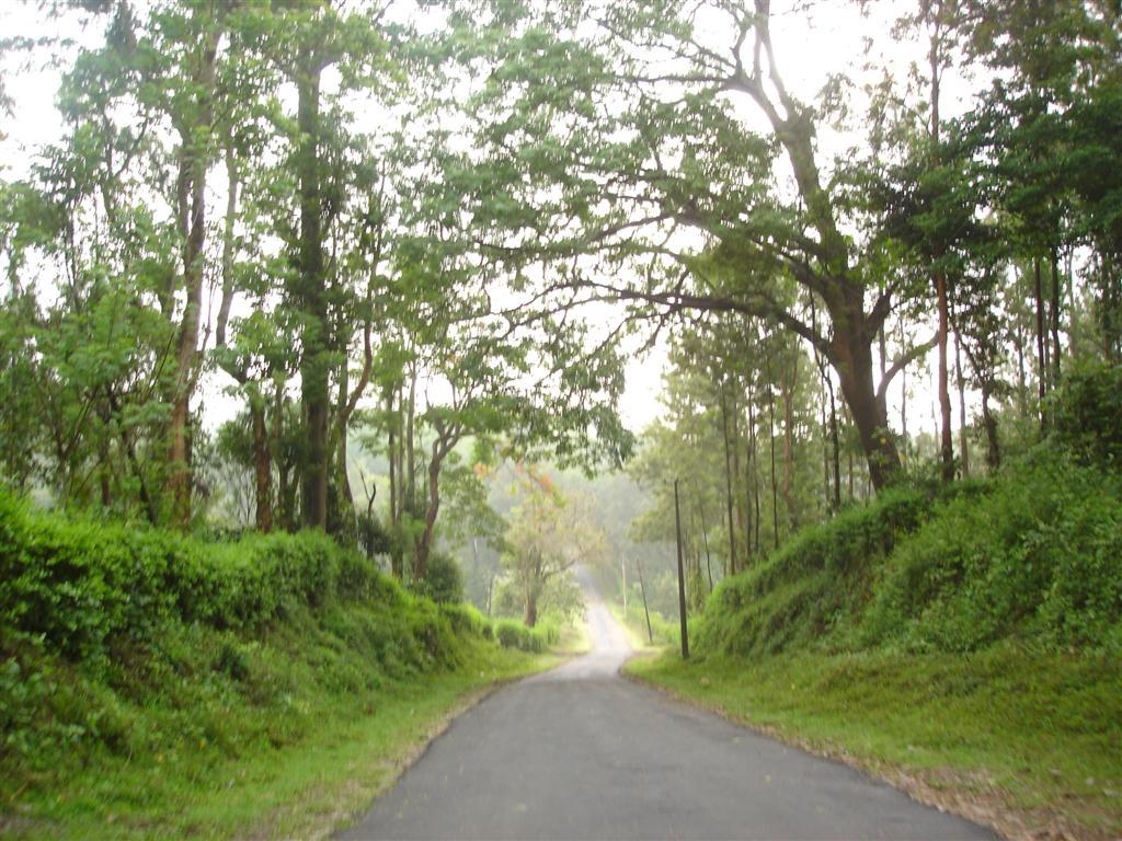Nagarhole to Bandipur
