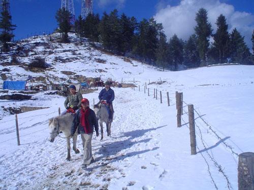 Snow Kufri Himachal