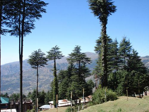 Patnitop Hill