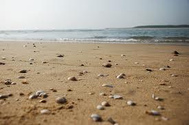 Cuddalore's Silver beach