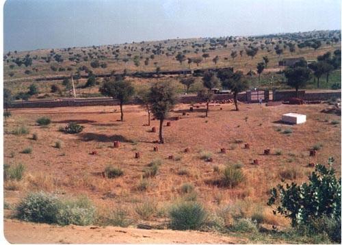 A view of the desert near Churu