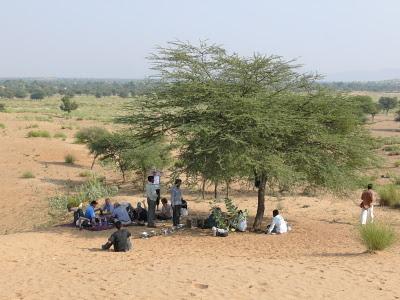 Shekhawati Camel Trip Lunch in the Desert