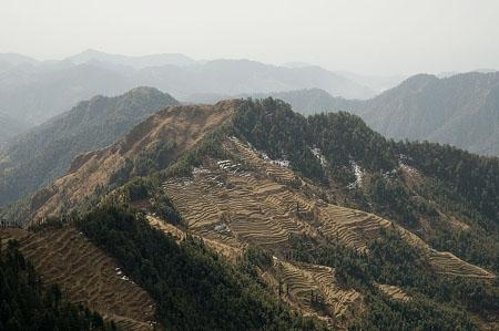 Terrace fields near Dhanaulti