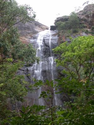 Akasa gangai waterfalls kolli hills namakkal district