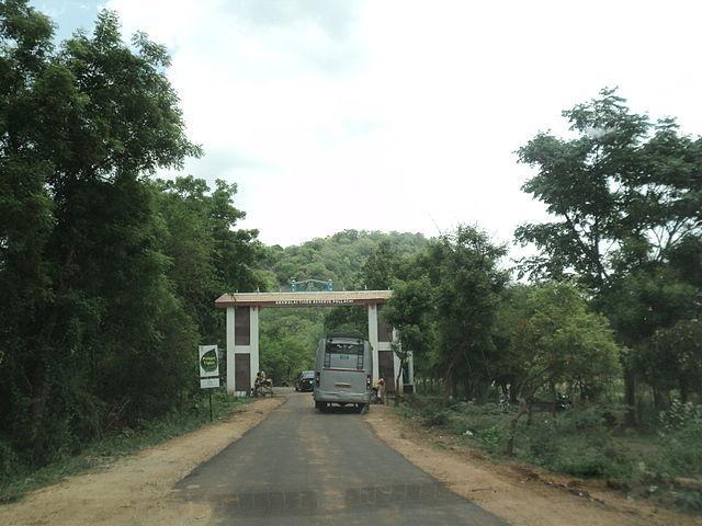 Anamalai Tiger Reserve Pollachi
