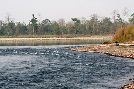 Bharali River