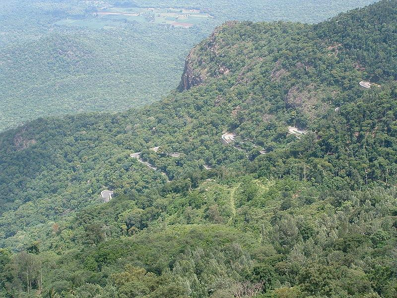Yercaud View from Lady's Seat