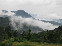 View from Ponmudi