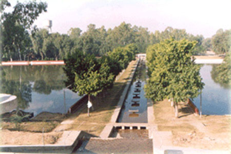 Bhiwani District Garden