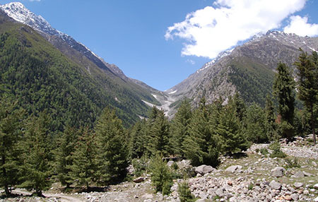 The view of Sangla Valley.