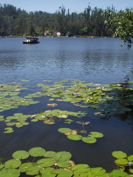 Lake in Kodaikanal, the most famous tourist destination in the district